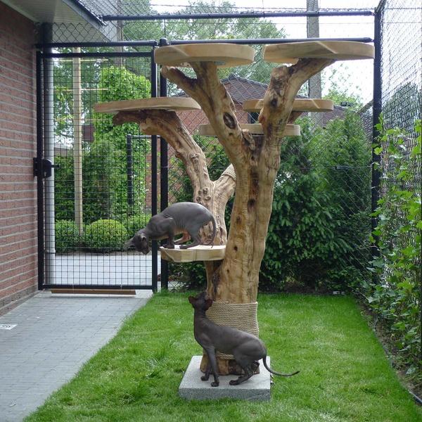 Unieke buiten krabpaal van treeworld asten marktgigant - Tuinmodellen met rollen ...